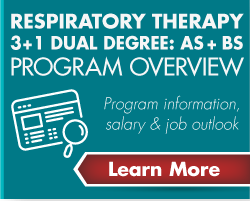 4 Year Dual Degree Program Overview Link